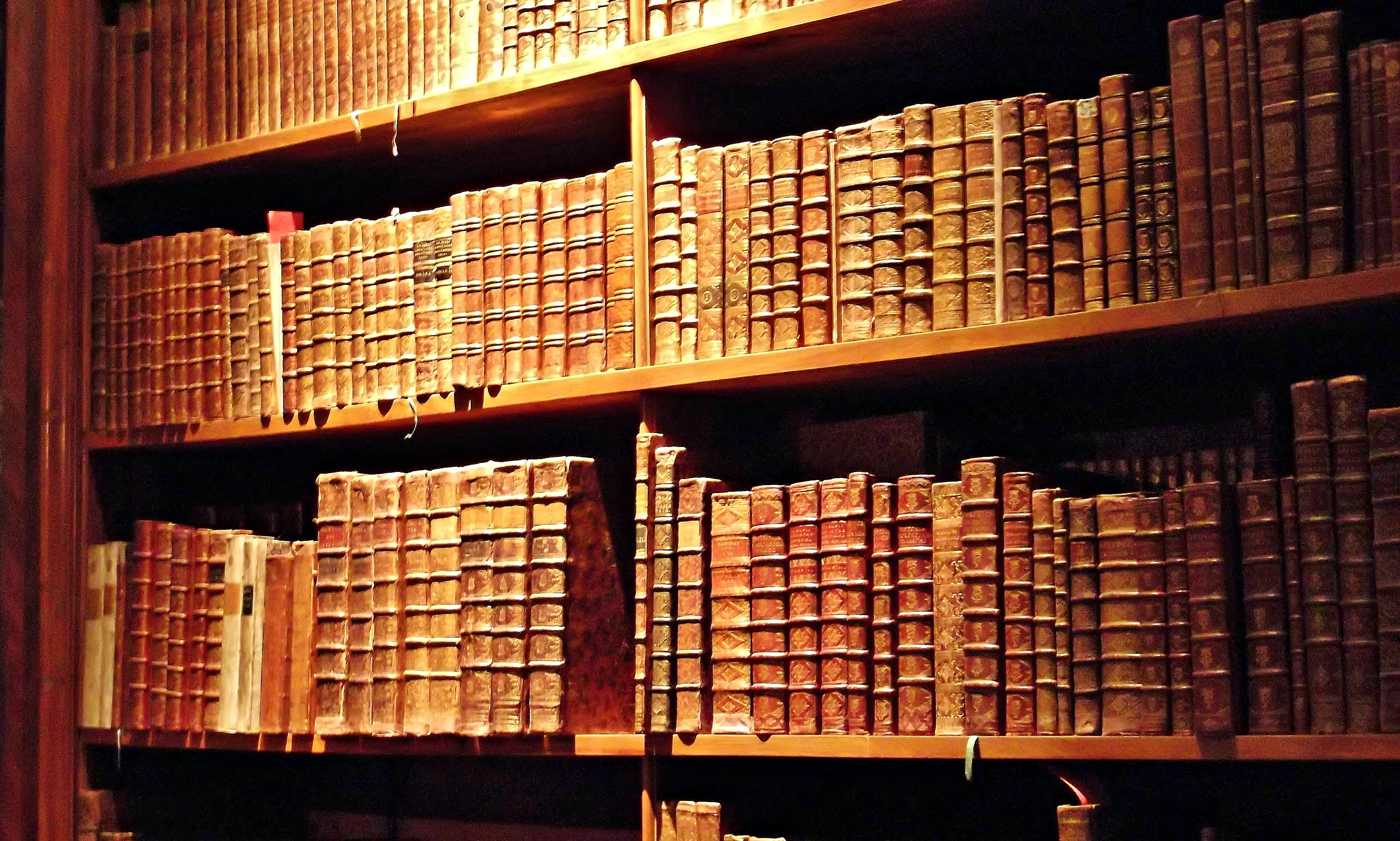 Beloved relic s state hall of the austrian national for Biblioteca cologne